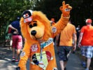 SPA, BELGIUM F1/2016: A Max Verstappen Red Bull Racing fan dressed as a lion walks around the circuit during final practice.