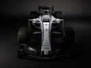 Williams FW40 launch pictures