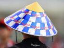 Red Bull Fan Japanese GP F1/2017