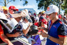 Pierre Gasly Toro Rosso Australian GP F1/2018